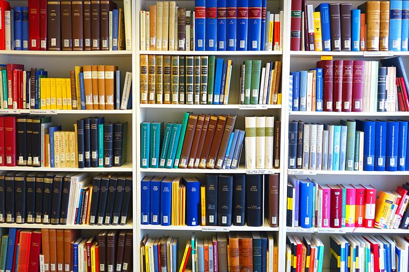 Buchregal in der Bibliothek der GfdS